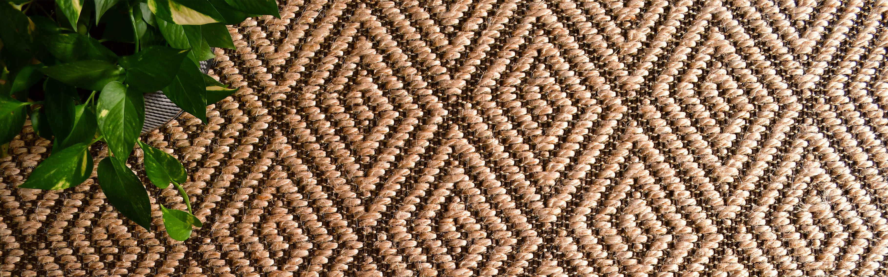 buy quality sisal rugs