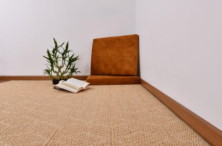 Buy CLAUDETTE CREMA Rugs Online in India