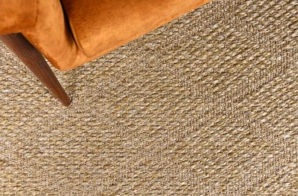 Buy TRELLIES DESERT SAND Rugs Online in India